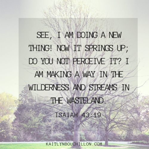 See, I am doing a new thing... Isaiah 43:19
