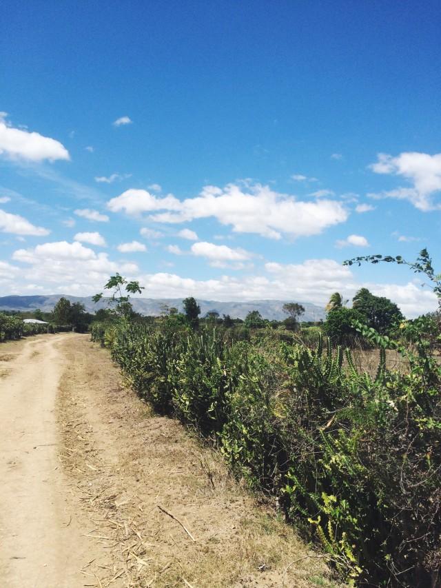 Haiti dirt path