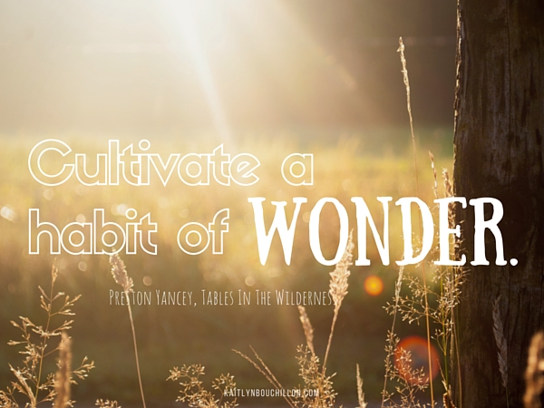 Cultivate a habit of wonder. Via http://kaitlynbouchillon.com/tables-in-the-wilderness