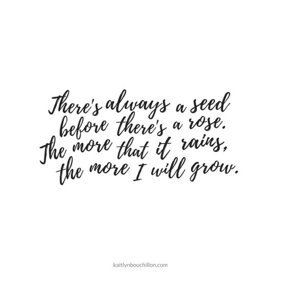 There's always a seed before there's a rose. The more that it rains, the more I will grow.