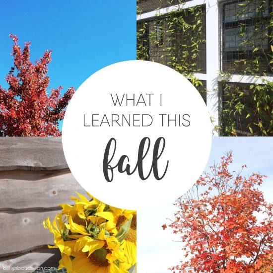 A few things I've learned this fall (and how I make money by shopping)