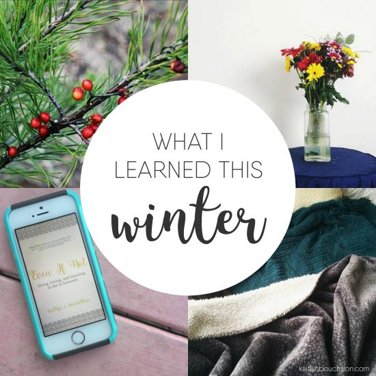 What I learned this winter...