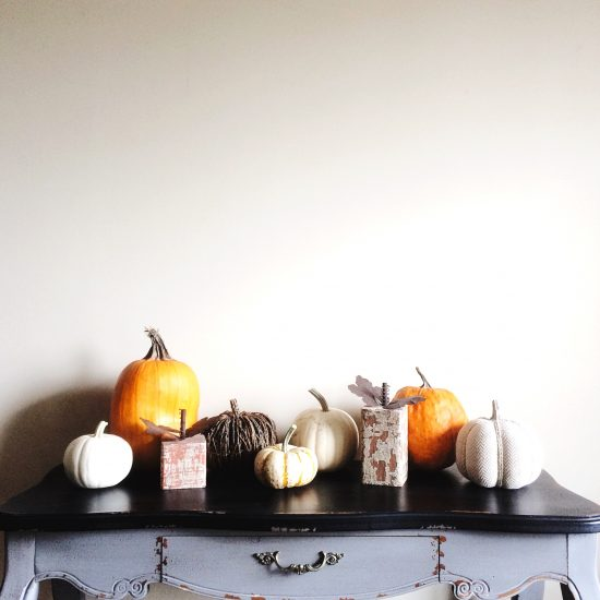 What I learned this fall: two people can collect way too many pumpkins in a very short amount of time.