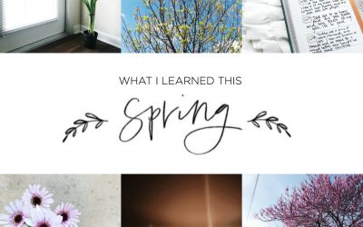 What I Learned This Spring