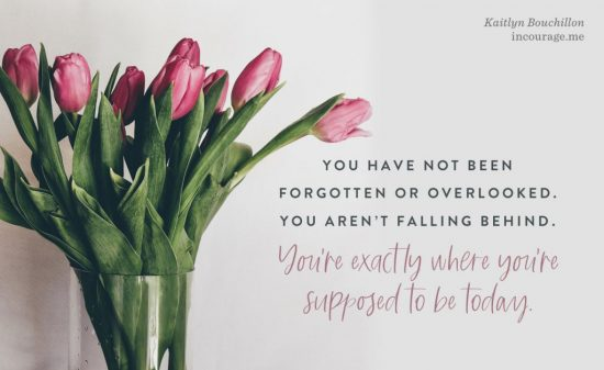 You have not been forgotten or overlooked.
