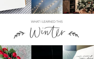 Seven Things I Learned This Winter